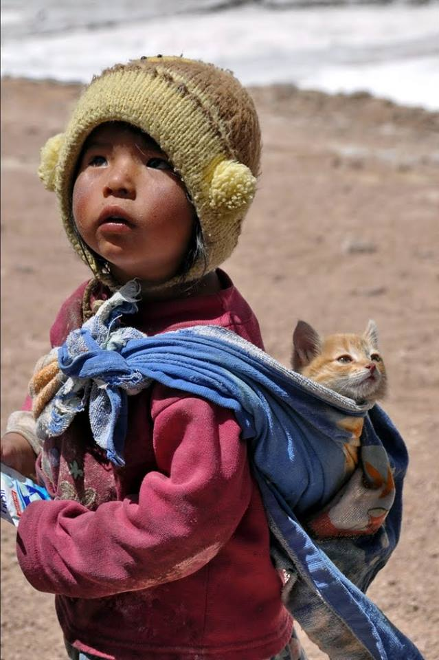 Asian girl and a cat