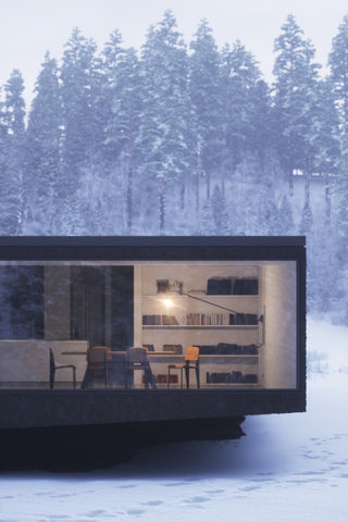 architecture winter house