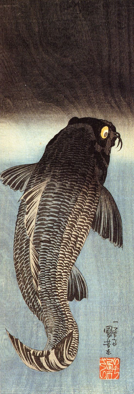 Japanese carp Before long, alas! This body will lie upon earth unheeded and lifeless like a useless log. Dhammapada.  LIBERTY INFINITY