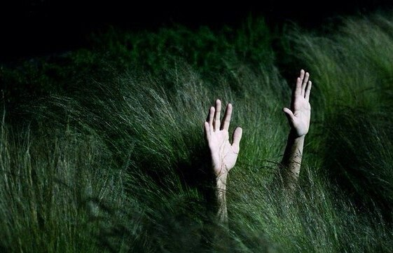 gras-hands-night