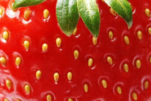 strawberry closeup 600x401 Art and design # 78  LIBERTY INFINITY