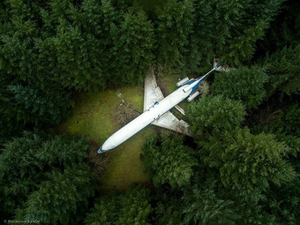 airplane in the forest 2
