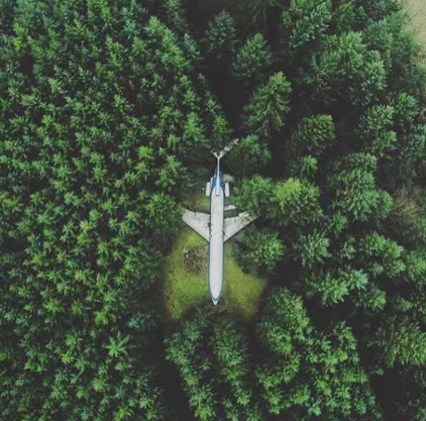 airplane in the forest 600x592 art and design # 89  LIBERTY INFINITY