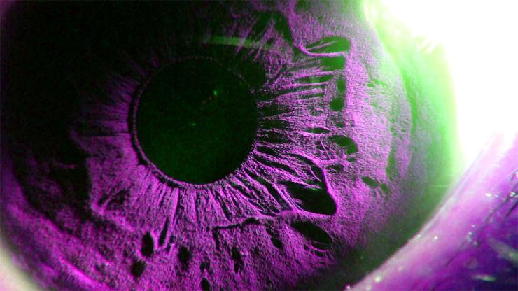 eye_lsdex